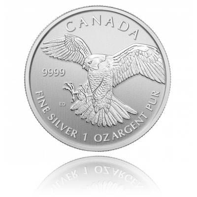 1 Unze Silbermünze Canada Serie Birds of Prey - Peregrine Falcon 2014