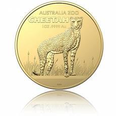 Goldmünze 1 oz Cheetah Gepard 2021 2. Ausgabe Zoo-Serie