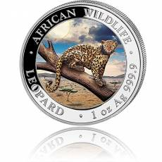1 Unze Silbermünze Somalia African Wildlife Leopard farbig 2021