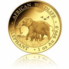 Somalia Elefant 1/4 Unze Gold 2022