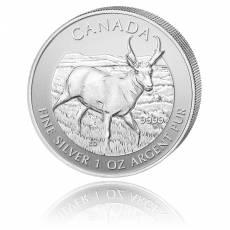 1 Unze Silber Canada Antilope-Wildlife Serie 2013