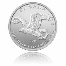 1 Unze Silber Canada Serie Birds of Prey II. Motiv - Bald Eagle 2014